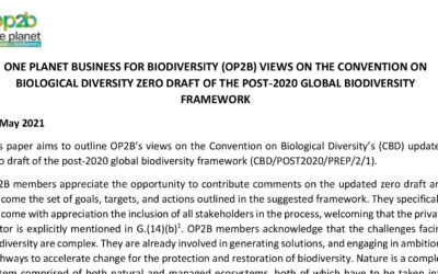 Position Paper to the CBD post-2020 Global Biodiversity Framework Draft 0.5 (May 2021)