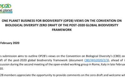 Position Paper to the CBD post-2020 Global Biodiversity Framework Draft 0 (Feb 2020)
